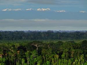 Region Andino-Amazonica