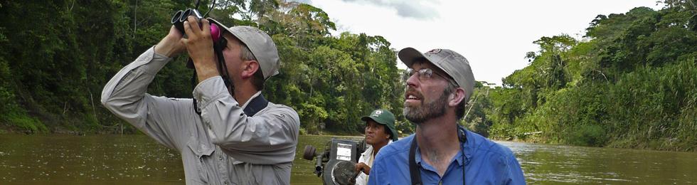 Birding on Los Amigos River - Foto por Daniel Huamán