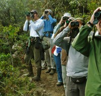 Observadores de aves - foto por Daniel Huamán
