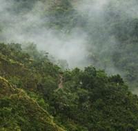 bosque nublado - foto José María Fernández Díaz Formentí