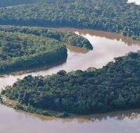 Amazonas-01