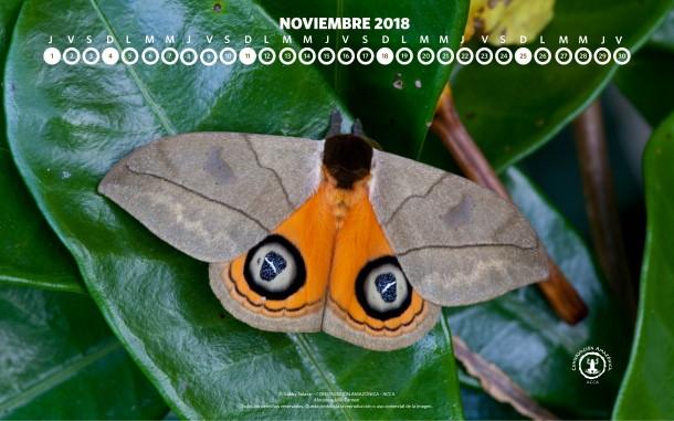 Diciembre 2017_Calendario-04